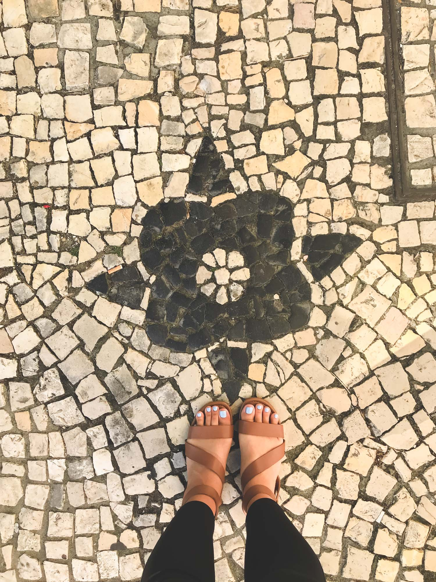 Wander the Streets in Aveiro