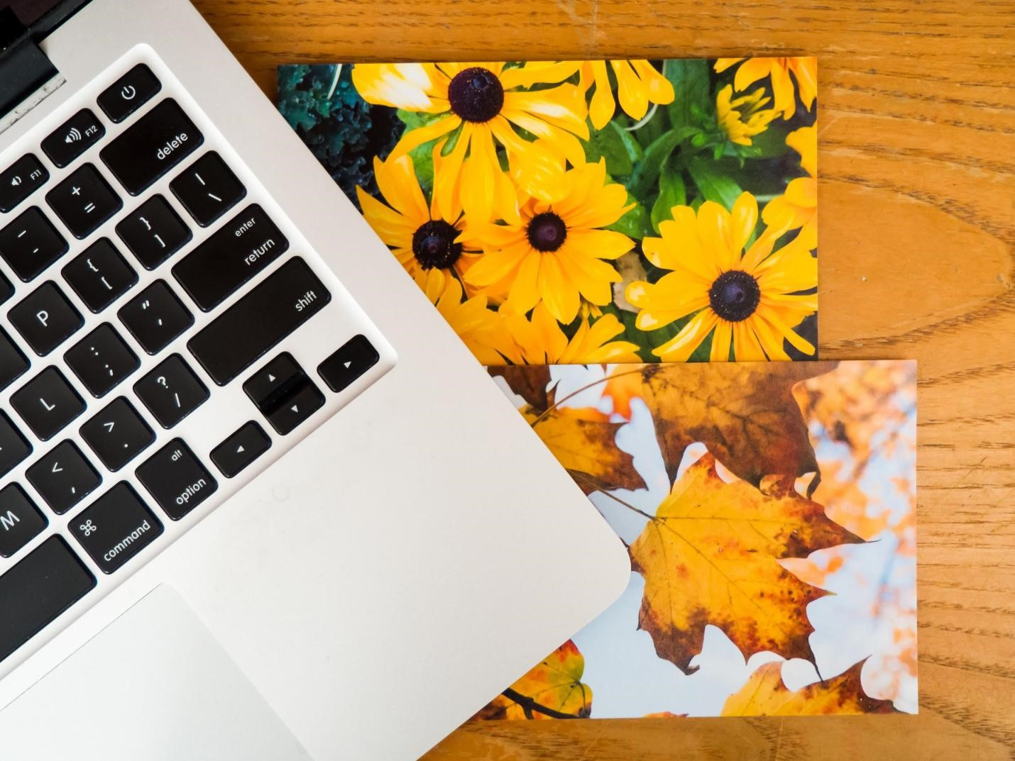 Create a portfolio