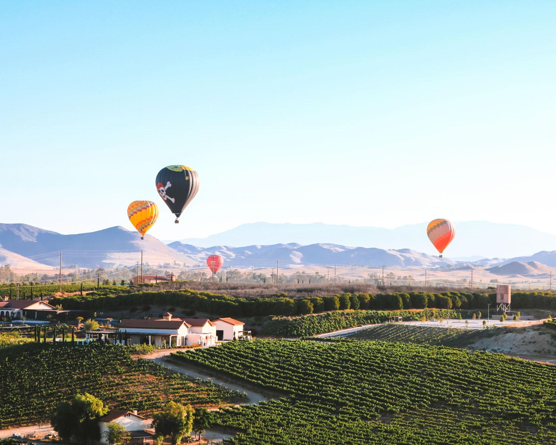 wine farm in Temecula, California
