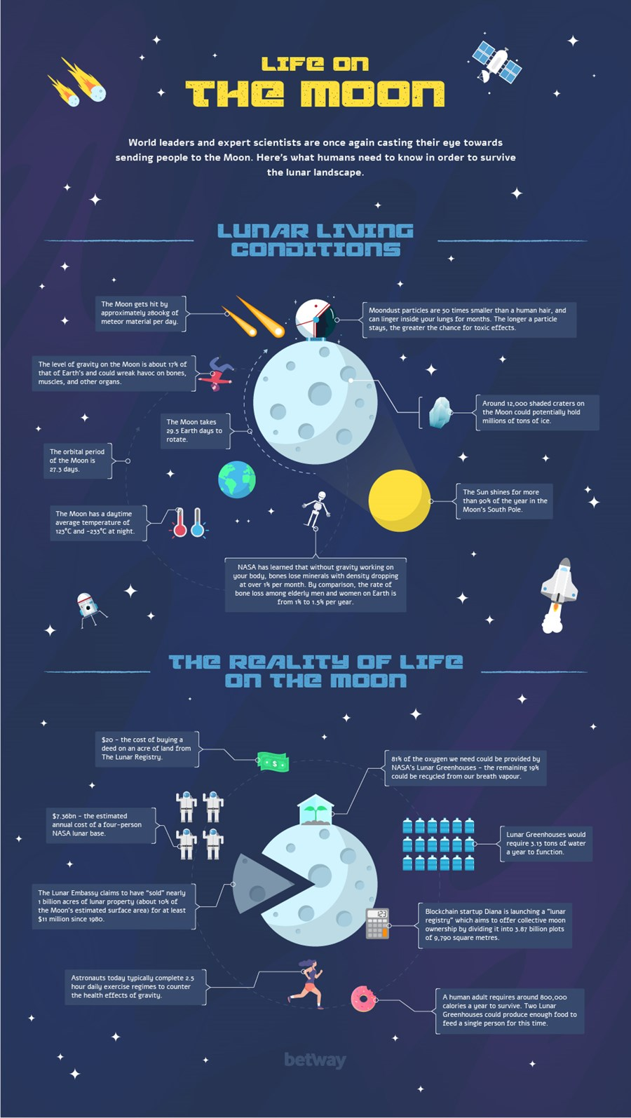 Life on the Moon Infographic
