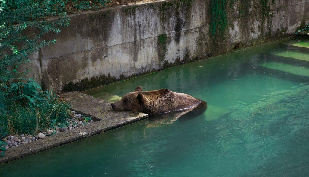 Bärengraben