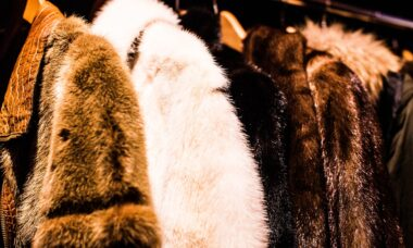 $4.3B Mink Fur Industry Faces up to COVID-19 Challenges