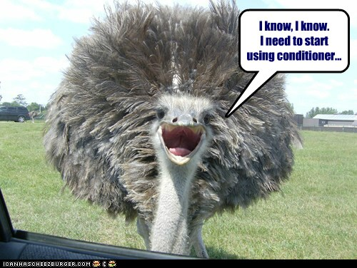 conditioner.jpg