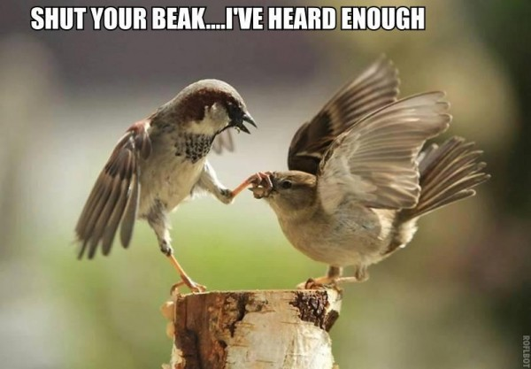 shut your beak.jpg