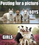 girl and boy dogss.jpg