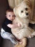 dog and kid.jpg