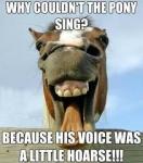 horse joke.jpg