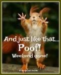 weekend gone.jpg