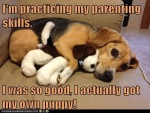 parenting skills.jpg