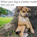 better model than you.jpg