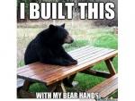 built with bear hands.jpg