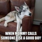 another good boy.jpg