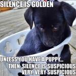 silence is golden.jpg