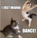 just want to dance.jpg
