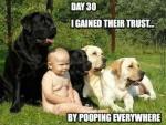 gained their trust.jpg