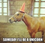 unicorn some day.jpg
