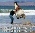 touch my foot.jpg
