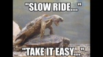 slow ride.jpg