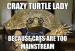 crazy turtle lady.jpg